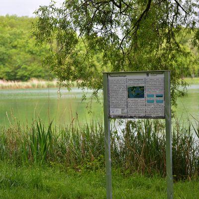 Umwelt - Infopfad Baggersee - Infotafel